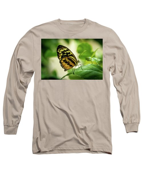 Brown And Black Tropical Butterfly Resting Long Sleeve T-Shirt