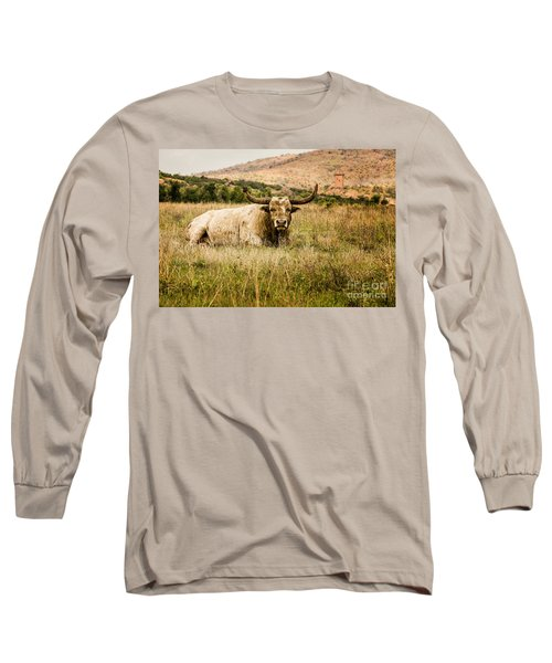 Bull Longhorn Long Sleeve T-Shirt