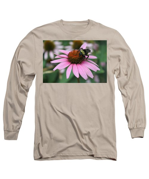 Bumble Bee On Pink Coneflower Long Sleeve T-Shirt