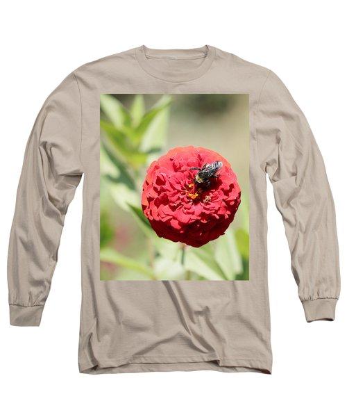 Bumble Bee On Zinnia Long Sleeve T-Shirt