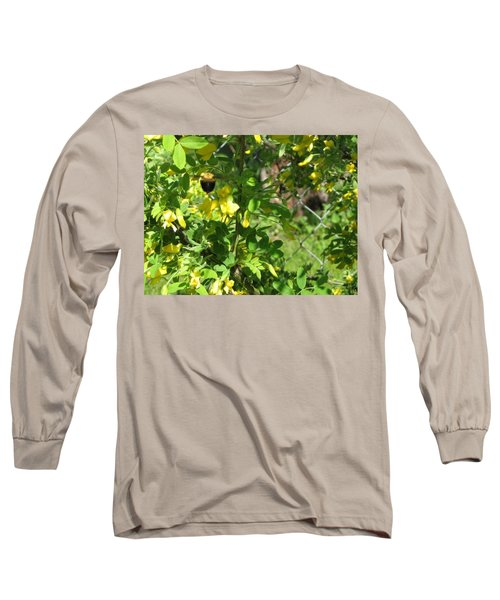 Bumblebee In Flight In Yellow Flowers Long Sleeve T-Shirt by Barbara Yearty