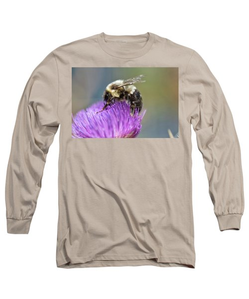 Bumblebee Long Sleeve T-Shirt by Nikki McInnes