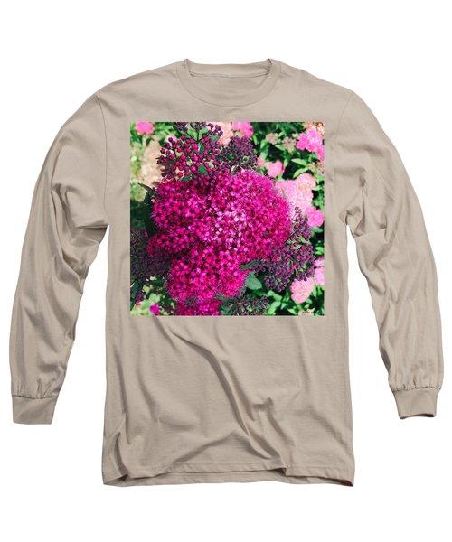 Burst Of Pink Delight Long Sleeve T-Shirt