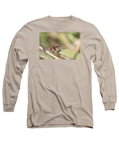 Long Sleeve T-Shirt featuring the photograph Bush Cricket by Jivko Nakev