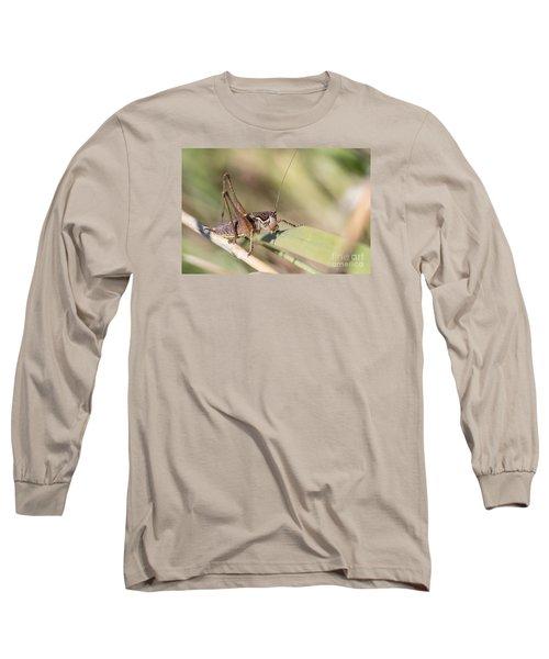 Bush Cricket Long Sleeve T-Shirt