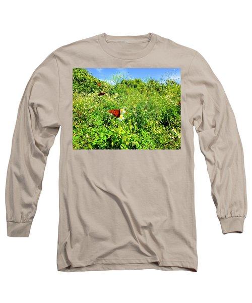 Butterfly Bonanza Long Sleeve T-Shirt