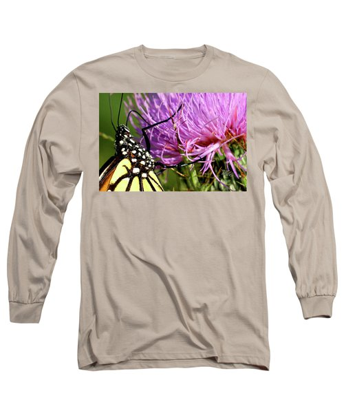 Butterfly On Bull Thistle Long Sleeve T-Shirt