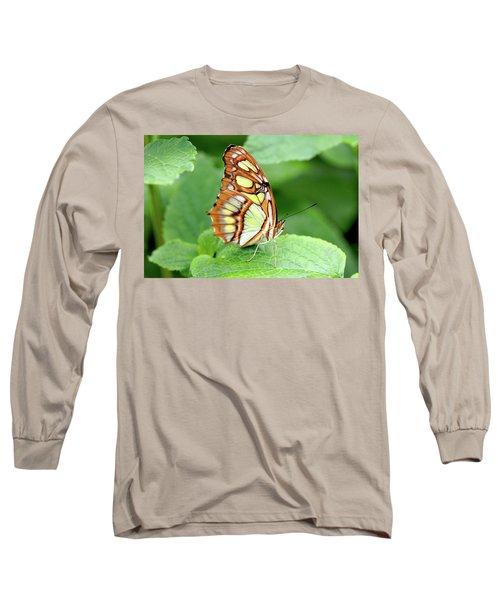 Butterfly On Leaf Long Sleeve T-Shirt by Meta Gatschenberger