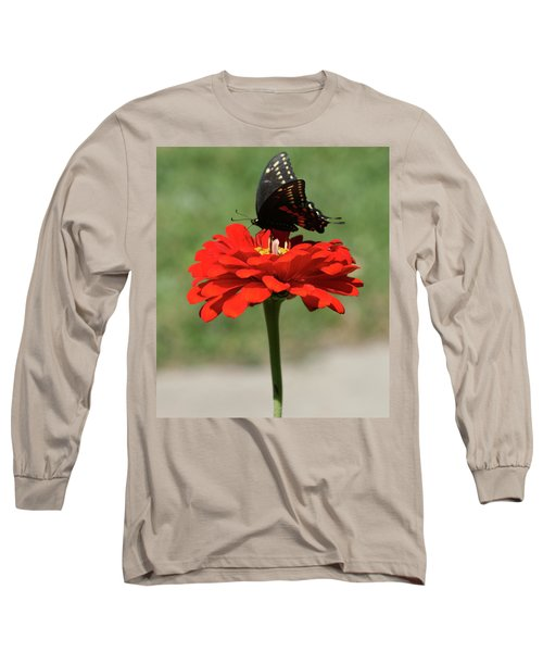 Butterfly On Red Zinnia Long Sleeve T-Shirt