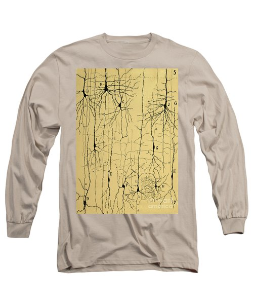 Cajal Drawing Of Microscopic Structure Of The Brain 1904 Long Sleeve T-Shirt