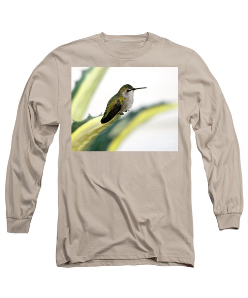 Calliope Hummingbird On Agave Long Sleeve T-Shirt