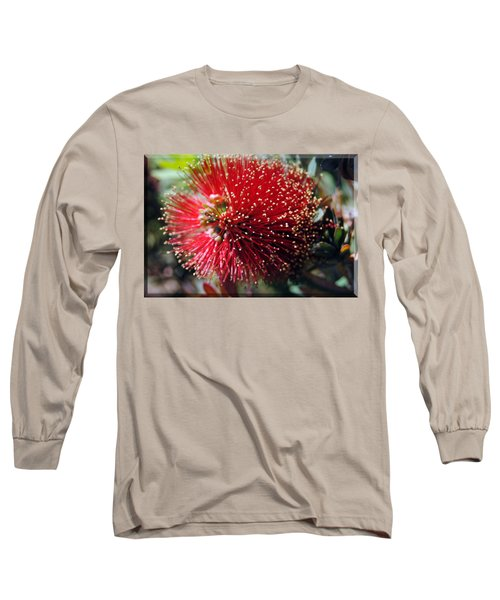 Callistemon - Bottle Brush T-shirt 5 Long Sleeve T-Shirt by Isam Awad