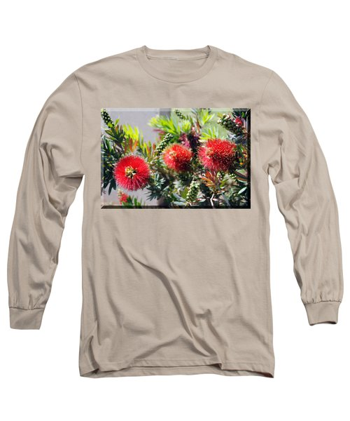 Callistemon - Bottle Brush T-shirt 6 Long Sleeve T-Shirt by Isam Awad