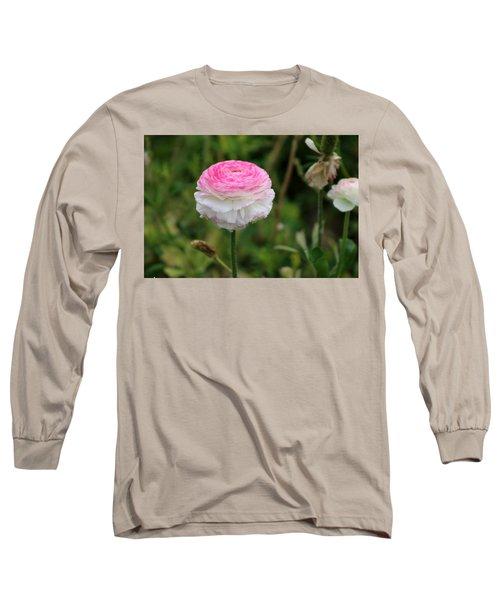Candy Stripe Ranunculus Long Sleeve T-Shirt