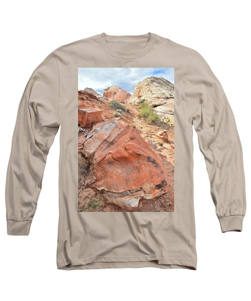 Canyon Of Color In Valley Of Fire Long Sleeve T-Shirt by Ray Mathis
