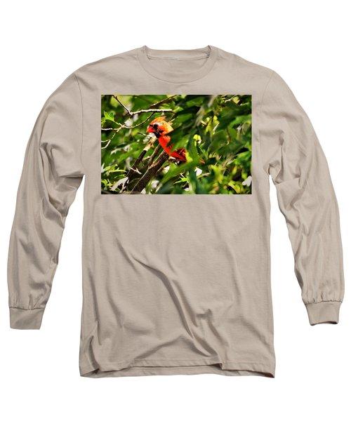 Cardinal In Tree Long Sleeve T-Shirt