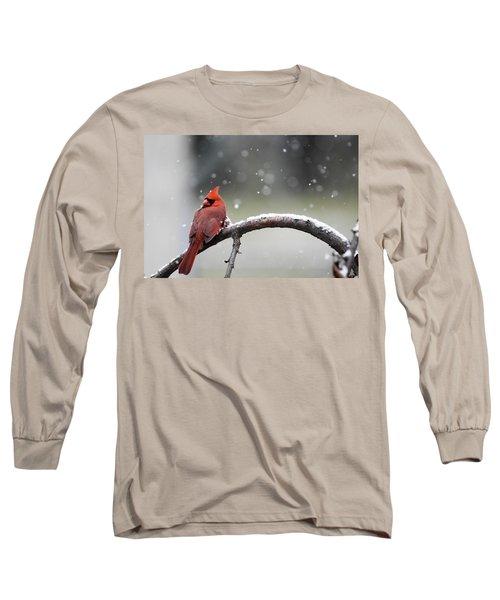 Cardinal Snowfall Long Sleeve T-Shirt