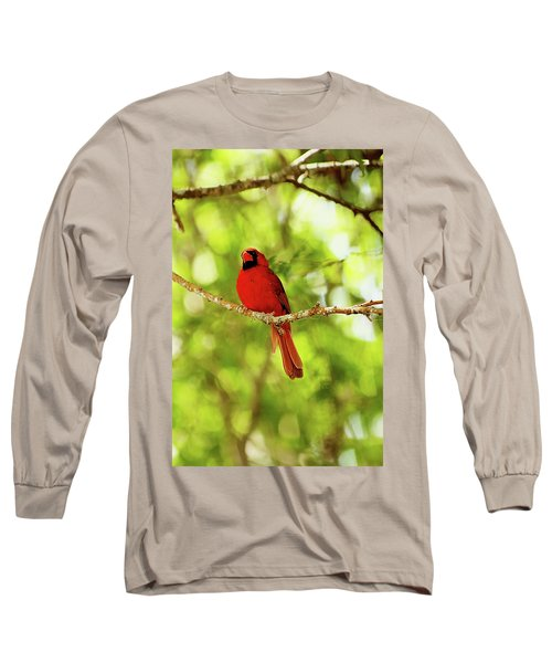 Cardinal Stare Long Sleeve T-Shirt