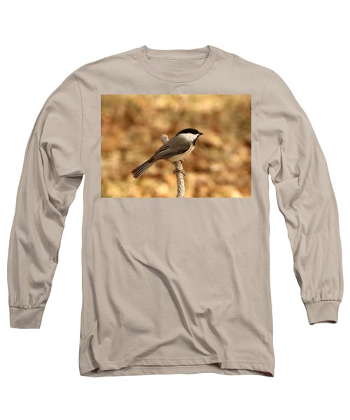 Carolina Chickadee On Branch Long Sleeve T-Shirt