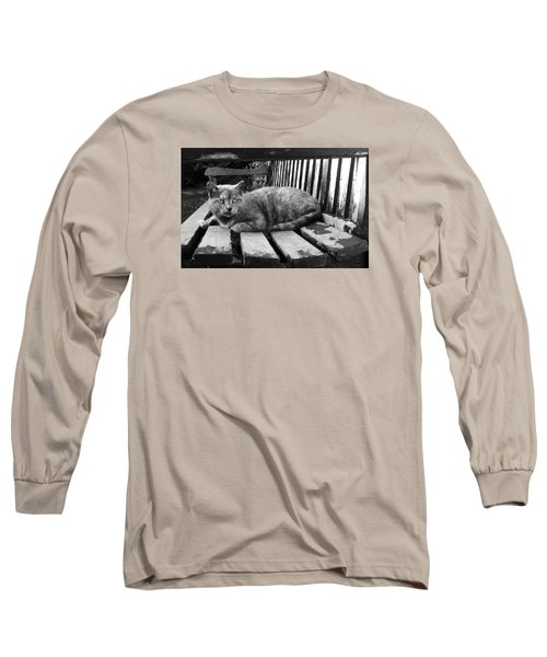 Cat On A Seat Long Sleeve T-Shirt by RKAB Works
