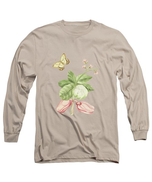 Catechu Tree Branch With Flowers And Apples By Cornelis Markee 1763 Long Sleeve T-Shirt