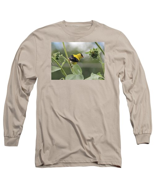 Caution Long Sleeve T-Shirt by Yumi Johnson