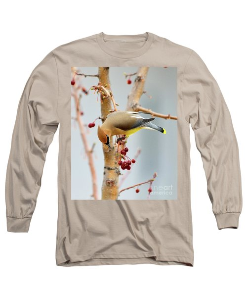 Cedar Waxwing 2 Long Sleeve T-Shirt