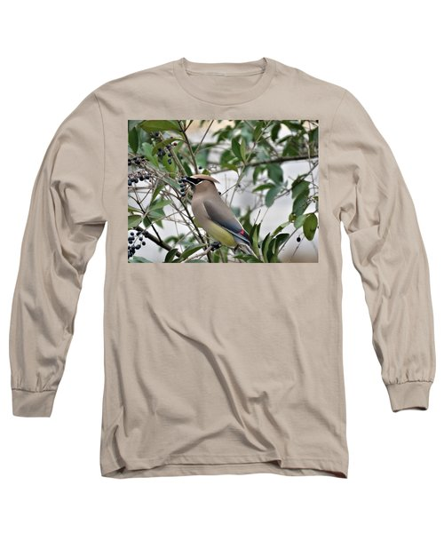 Cedar Waxwing 3 Long Sleeve T-Shirt by Kathy Long