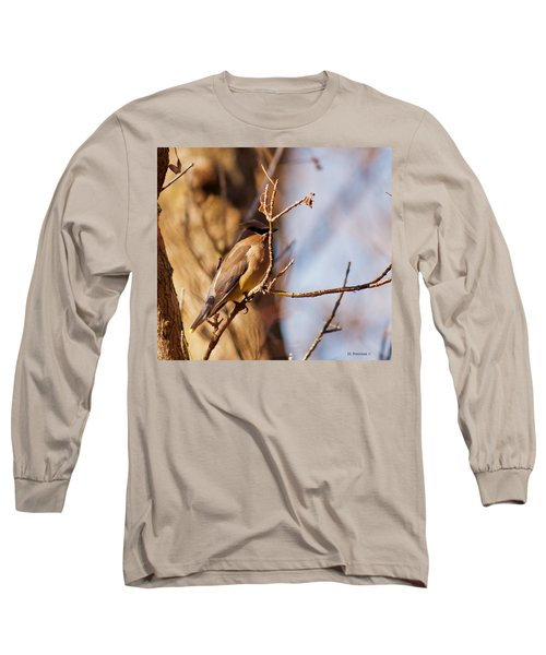 Cedar Waxwing In Autumn Long Sleeve T-Shirt