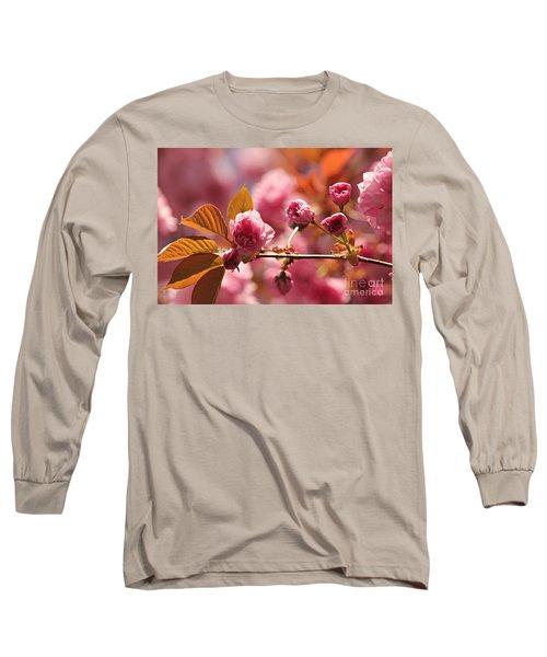 Cherry Blossoms Long Sleeve T-Shirt by Judy Palkimas