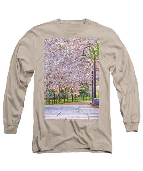 Cherry Morning Path Long Sleeve T-Shirt by David Cote