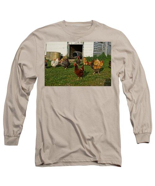 Chicken Scratch Long Sleeve T-Shirt by Steven Clipperton