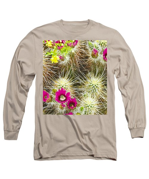 Cholla Cactus Blooms Long Sleeve T-Shirt