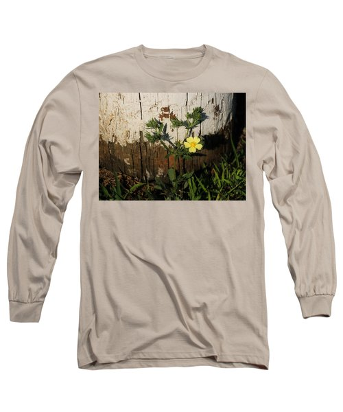 Cinquefoil Wildflower Long Sleeve T-Shirt