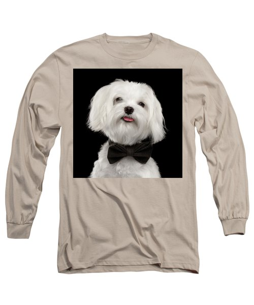 Closeup Portrait Of Happy White Maltese Dog With Bow Looking In Camera Isolated On Black Background Long Sleeve T-Shirt