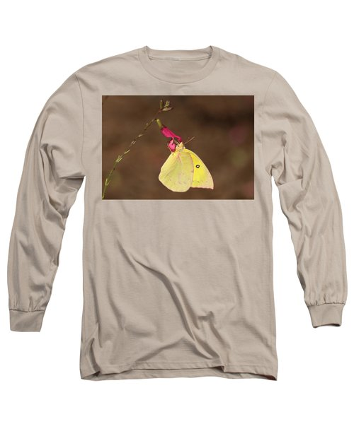 Clouded Sulphur Butterfly On Pink Wildflower Long Sleeve T-Shirt by Sheila Brown
