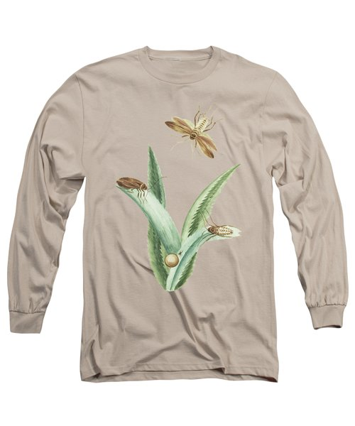 Cockroaches With An Egg On Ananas Leaves By Cornelis Markee 1763 Long Sleeve T-Shirt