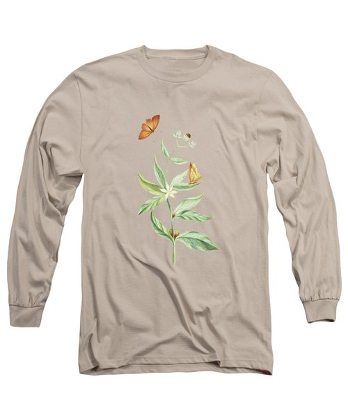 Coffee Branch With Butterfly Without Caterpillar By Cornelis Markee 1763 Long Sleeve T-Shirt