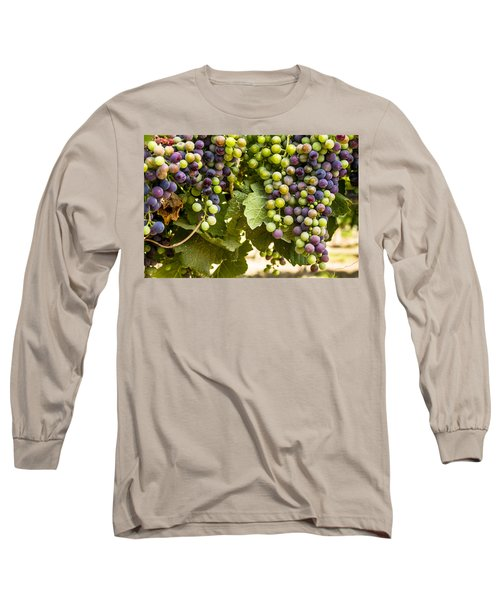 Colorful Red Wine Grape Long Sleeve T-Shirt