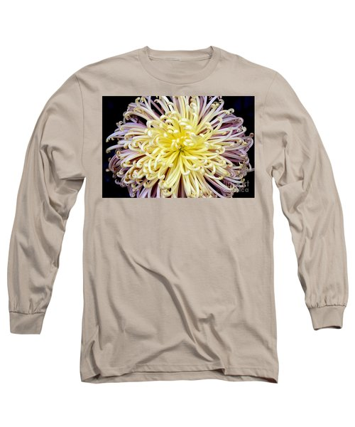 Colorful Spider Chrysanthemum   Long Sleeve T-Shirt