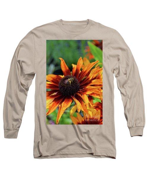 Coneflower  Long Sleeve T-Shirt by Eva Kaufman