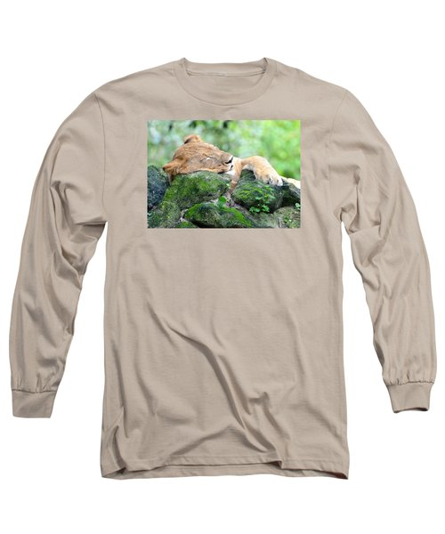 Contented Sleeping Lion Long Sleeve T-Shirt
