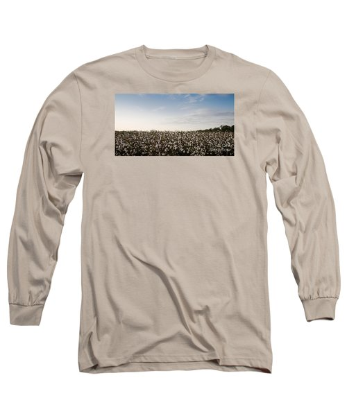 Cotton Field 2 Long Sleeve T-Shirt by Andrea Anderegg