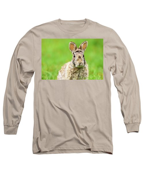 Cottontail Rabbit Long Sleeve T-Shirt