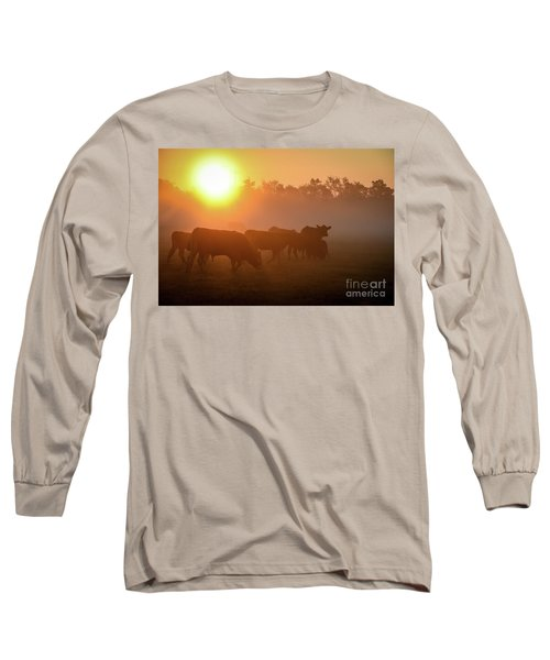Cows In The Sunrise Mist Long Sleeve T-Shirt