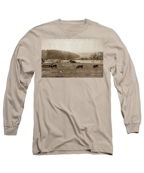 Long Sleeve T-Shirt featuring the photograph Cows On Baker Field by Cole Thompson