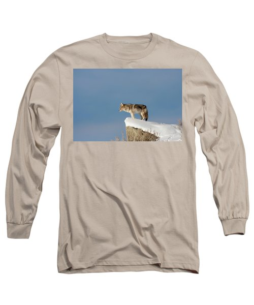 Coyote At Overlook Long Sleeve T-Shirt