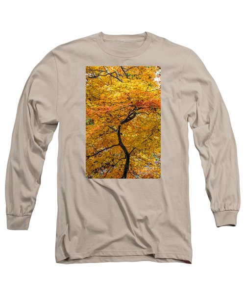 Crooked Tree Trunk Long Sleeve T-Shirt by Barbara Bowen