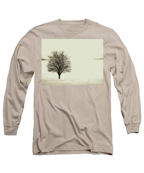 Crystal Lake In Winter Long Sleeve T-Shirt by Desiree Paquette