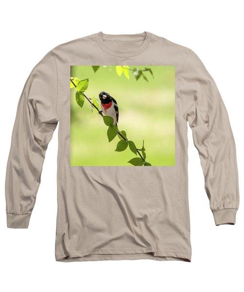 Cute Rose-breasted Grosbeak Long Sleeve T-Shirt